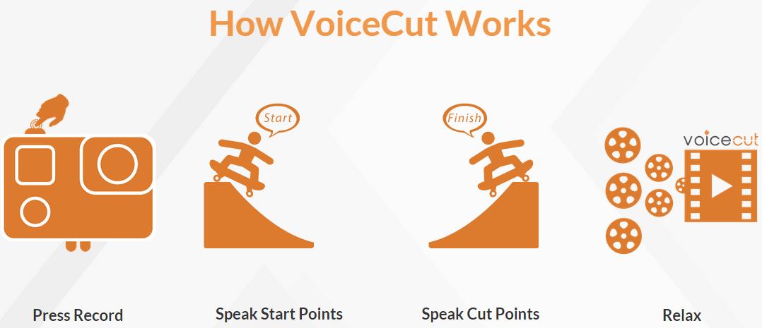 voicecut