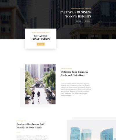 Business Consultant WordPress Hosting Theme